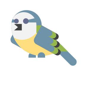review Words&Birds door susan spekschoor